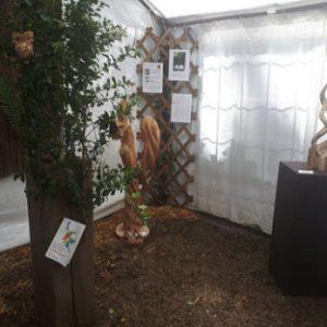 exposition outdoor